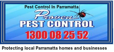 Protecting local Parramatta homes and businesses